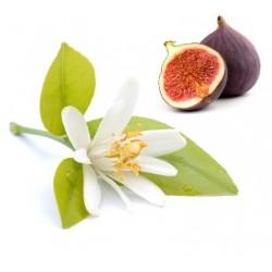 Blue Fig and Orange Blossom Αρωματικό Έλαιο