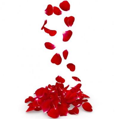 Rose Petals Αρωματικό Έλαιο