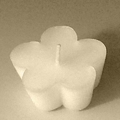 Καλούπι 6 Θέσεων Επιπλέοντα Κεριά - Λουλούδι
