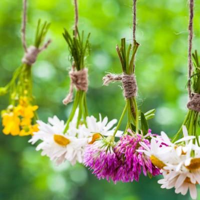 Herbal Αρωματικό Έλαιο