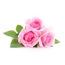 Τριαντάφυλλο (Γαλλικό) Εκχύλισμα 50ml