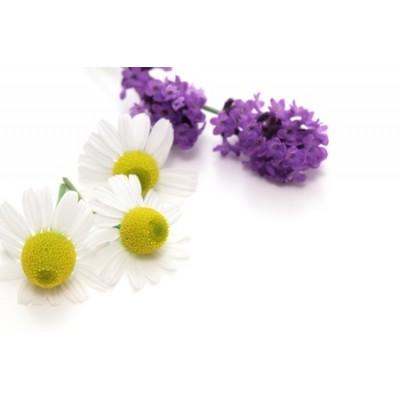 Lavender & Chamomile Αρωματικό Έλαιο