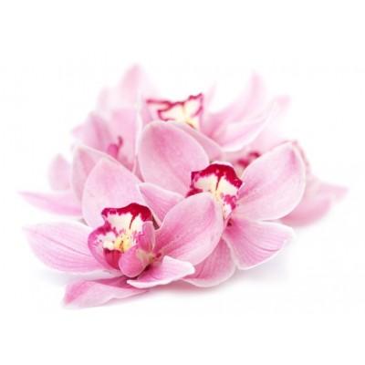 Orchidea Cashmire  Αρωματικό Ελαιο